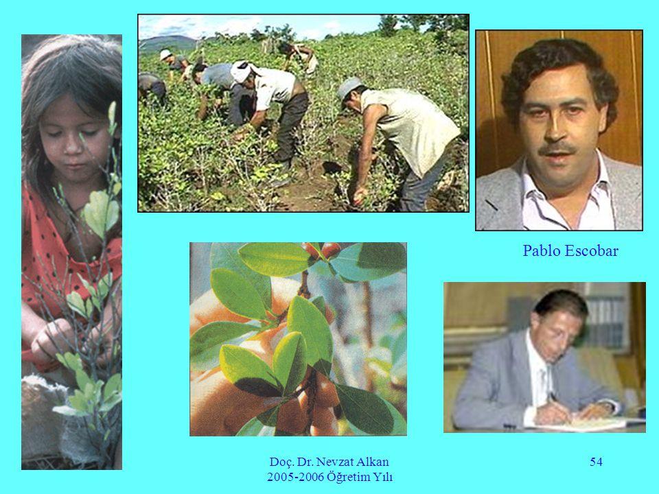 Doç. Dr. Nevzat Alkan 2005-2006 Öğretim Yılı 54 Pablo Escobar