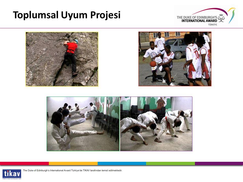 Toplumsal Uyum Projesi