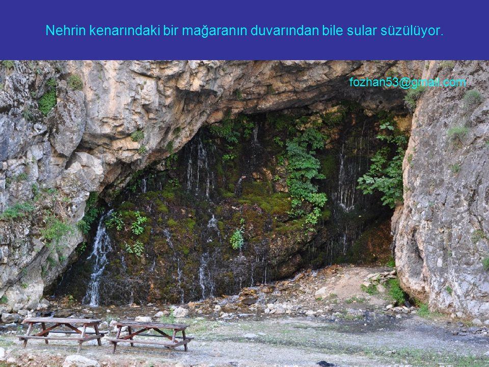 Nehrin kenarındaki bir mağaranın duvarından bile sular süzülüyor. fozhan53@gmail.com