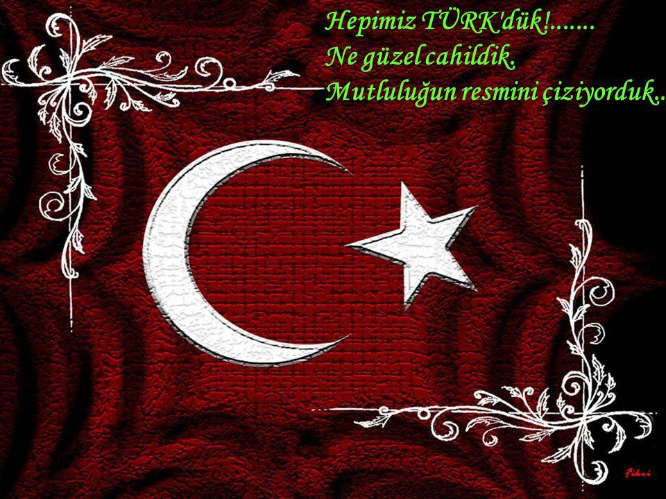 Ergenekon tertipleri, Çarşaf açılımı, Kürt açılımı, Ermeni açılımı yoktu.