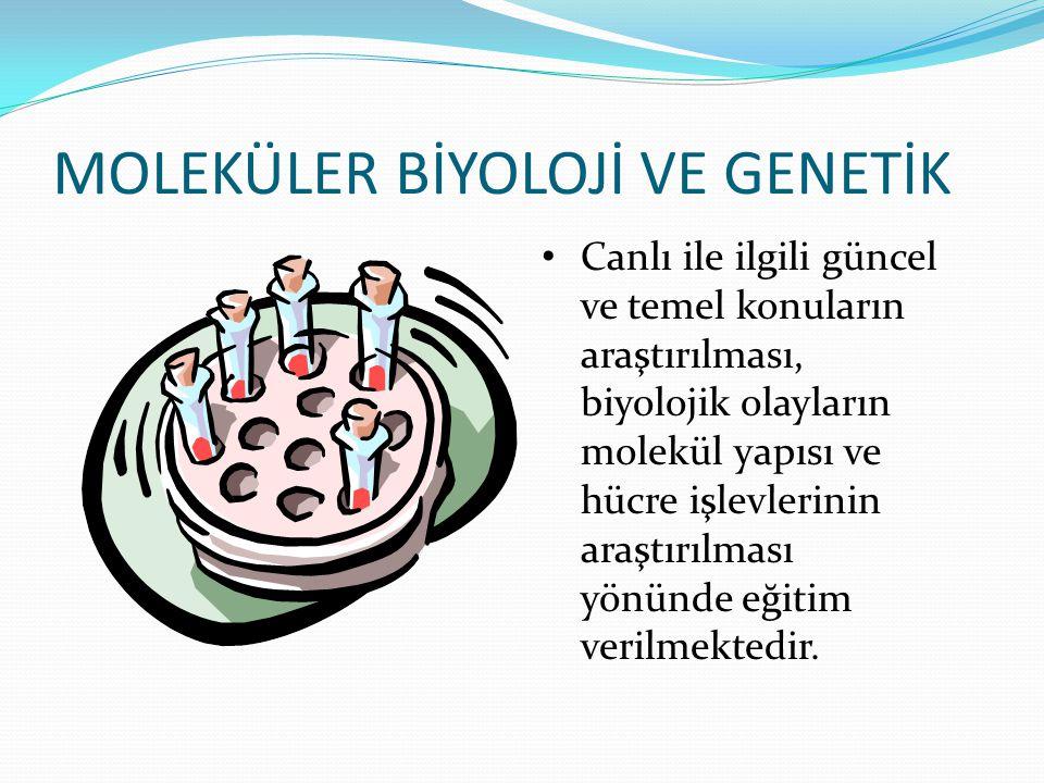 MOLEKÜLER BİYOLOJİ VE GENETİK Canlı ile ilgili güncel ve temel konuların araştırılması, biyolojik olayların molekül yapısı ve hücre işlevlerinin araşt