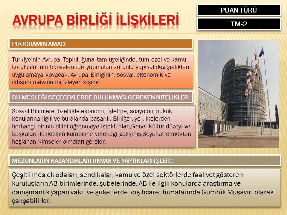 PUAN TÜRÜ TM-2 PROGRAMIN AMACI: Türkiye'nin Avrupa Topluluğuna tam üyeliğinde, tüm özel ve kamu kuruluşlarının bünyelerinde yapmaları zorunlu yapısal