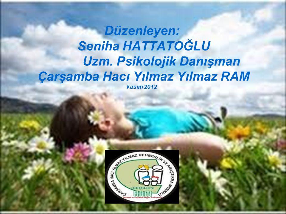 Düzenleyen: Seniha HATTATOĞLU Uzm. Psikolojik Danışman Çarşamba Hacı Yılmaz Yılmaz RAM kasım 2012