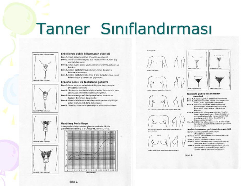 Tanner Sınıflandırması