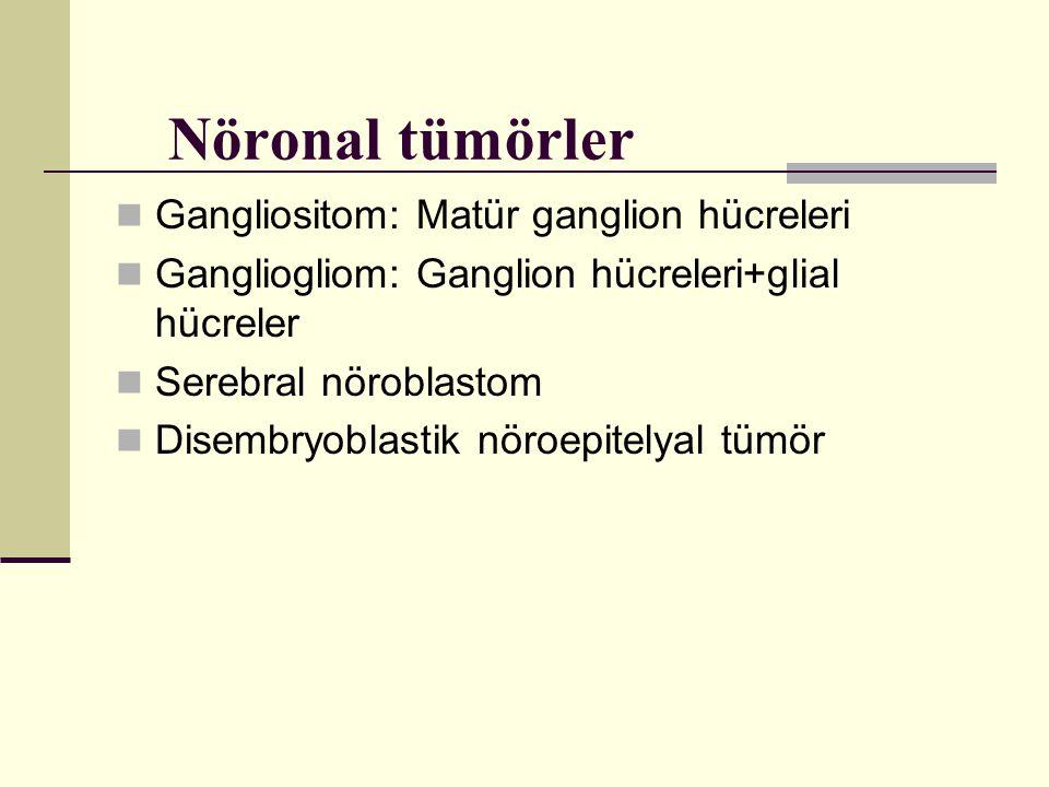 Nöronal tümörler Gangliositom: Matür ganglion hücreleri Gangliogliom: Ganglion hücreleri+glial hücreler Serebral nöroblastom Disembryoblastik nöroepit