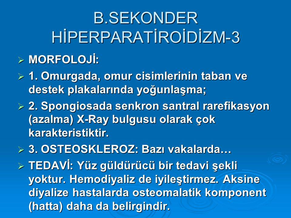 B.SEKONDER HİPERPARATİROİDİZM-3  MORFOLOJİ:  1.