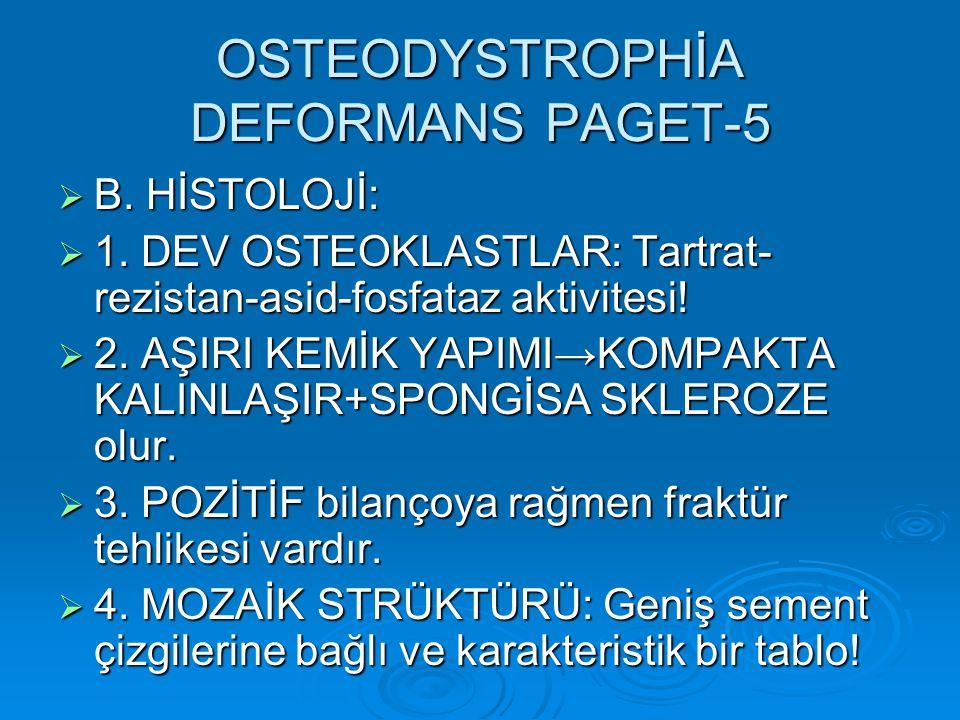 OSTEODYSTROPHİA DEFORMANS PAGET-5  B.HİSTOLOJİ:  1.