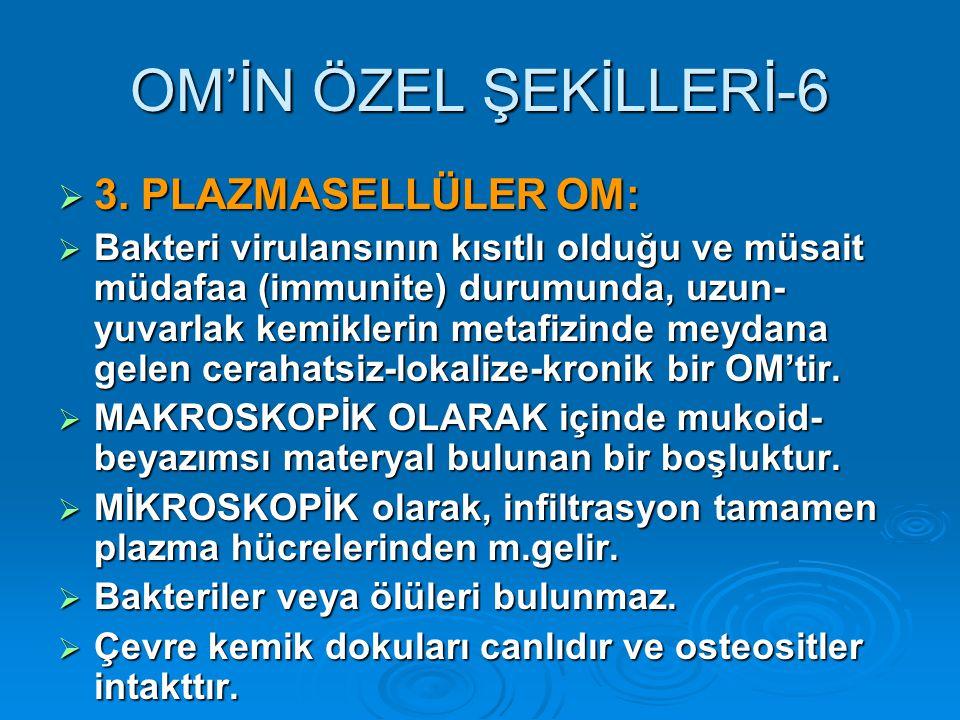 OM'İN ÖZEL ŞEKİLLERİ-6  3.