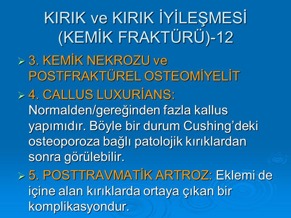 KIRIK ve KIRIK İYİLEŞMESİ (KEMİK FRAKTÜRÜ)-12  3.