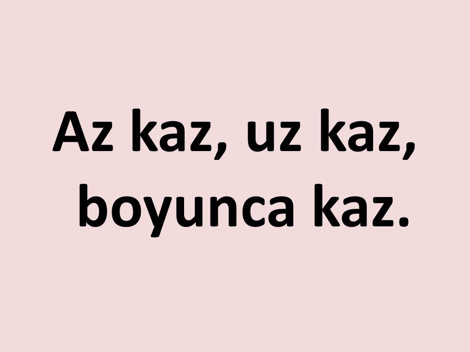 www.turkceciler.com Az kaz, uz kaz, boyunca kaz.