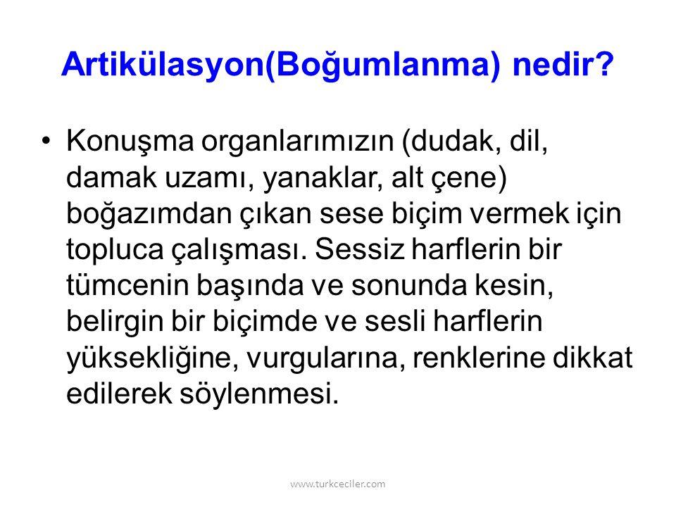 www.turkceciler.com Şu karşıda bir dal, dal sarkar kartal kalkar, kartal kalkar dal sarkar, dal kalkar kantar tartar.