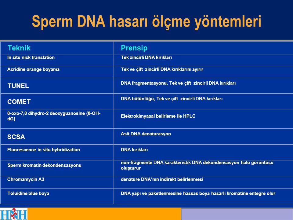Sperm DNA hasarı ölçme yöntemleri TeknikPrensip In situ nick translationTek zincirli DNA kırıkları Acridine orange boyamaTek ve çift zincirli DNA kırı