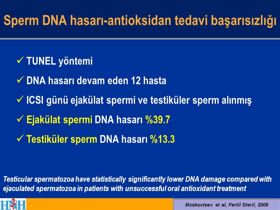 Sperm DNA hasarı-antioksidan tedavi başarısızlığı TUNEL yöntemi DNA hasarı devam eden 12 hasta ICSI günü ejakülat spermi ve testiküler sperm alınmış E