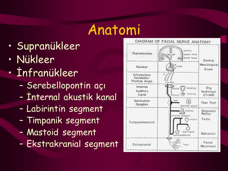 Anatomi Supranükleer Nükleer İnfranükleer –Serebellopontin açı –İnternal akustik kanal –Labirintin segment –Timpanik segment –Mastoid segment –Ekstrak