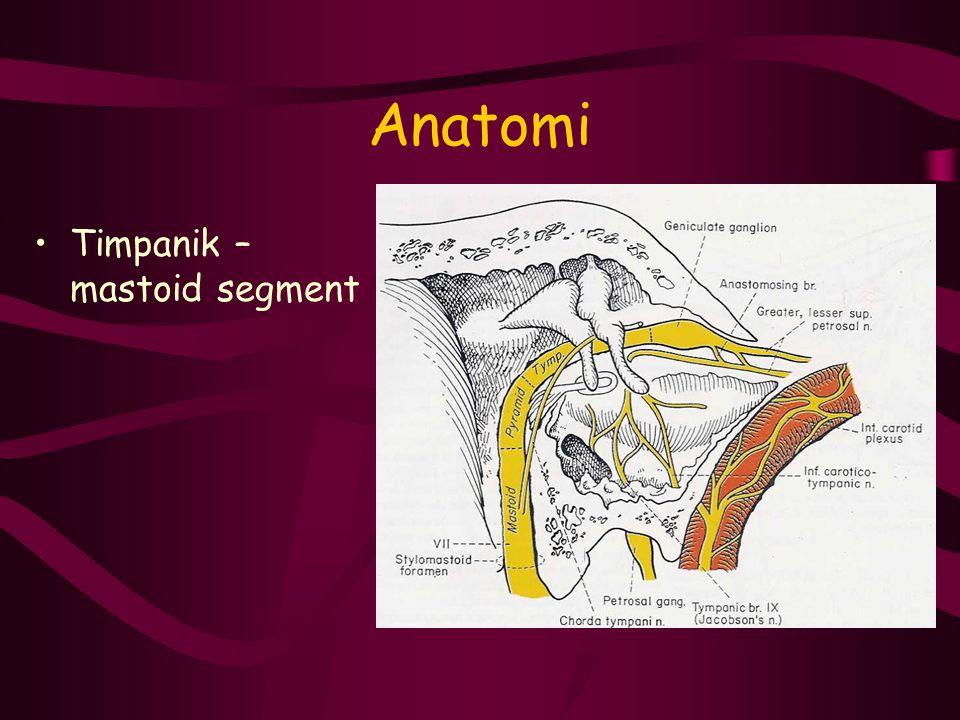 Ekstrakranial segment Tümörler –Parotis tümörleri –Cilt tümörleri Travma –Kesici –Künt İatrojenik –Parotis cerrahisi –Temporomandibüler eklem cerrahisi