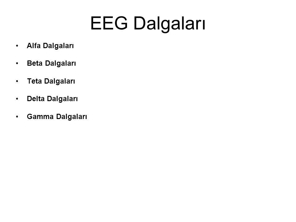 EEG Dalgaları Alfa Dalgaları Beta Dalgaları Teta Dalgaları Delta Dalgaları Gamma Dalgaları