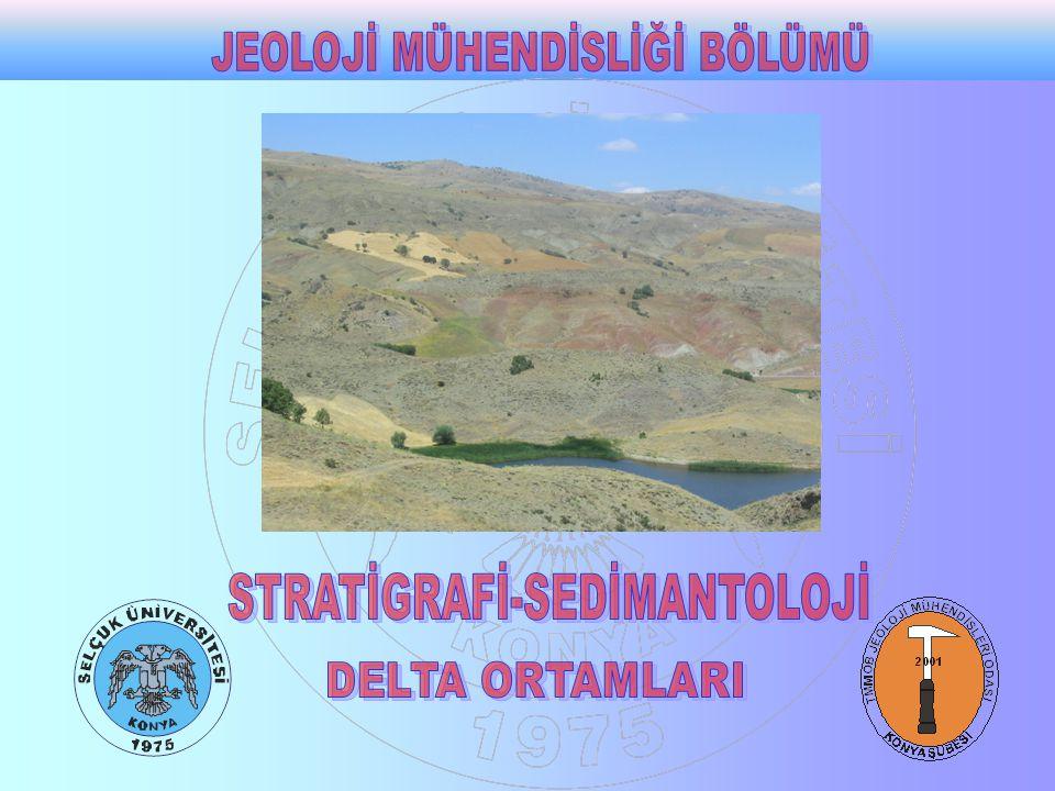 Bu ortamlar karasal ortamlarla denizel ortamların birleştiği yerlerde ki sedimenter ortamlardır.