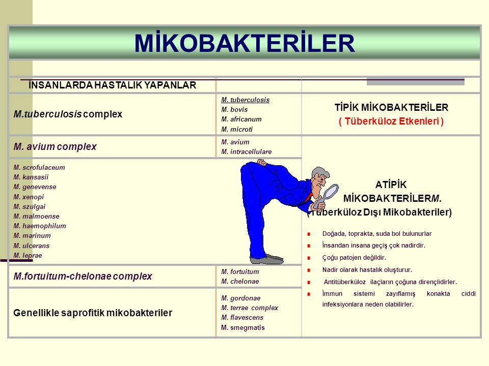MİKOBAKTERİLER İNSANLARDA HASTALIK YAPANLAR M.tuberculosis complex M.