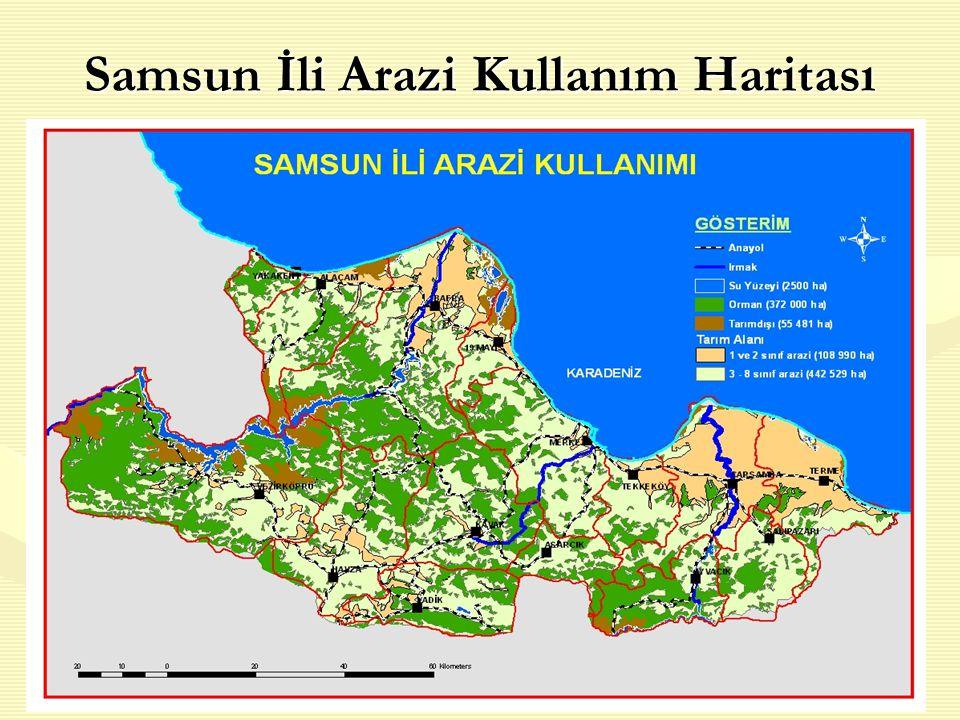 8 Samsun İli Arazi Kullanım Haritası