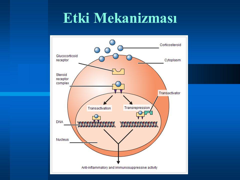 Kortikosteroidler  İmmünosüpresif  Antimitotik  Vazokonstrüktif  Antiinflamatuvar