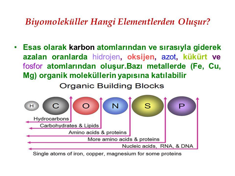 Biyomoleküller Hangi Elementlerden Oluşur? Esas olarak karbon atomlarından ve sırasıyla giderek azalan oranlarda hidrojen, oksijen, azot, kükürt ve fo