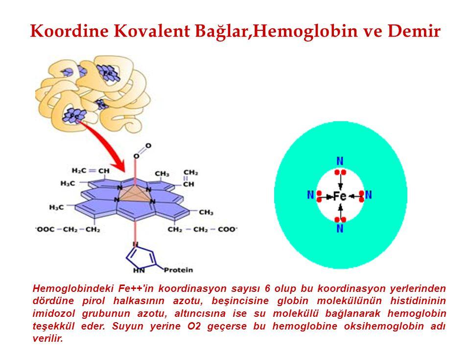 Koordine Kovalent Bağlar,Hemoglobin ve Demir Hemoglobindeki Fe++'in koordinasyon sayısı 6 olup bu koordinasyon yerlerinden dördüne pirol halkasının az