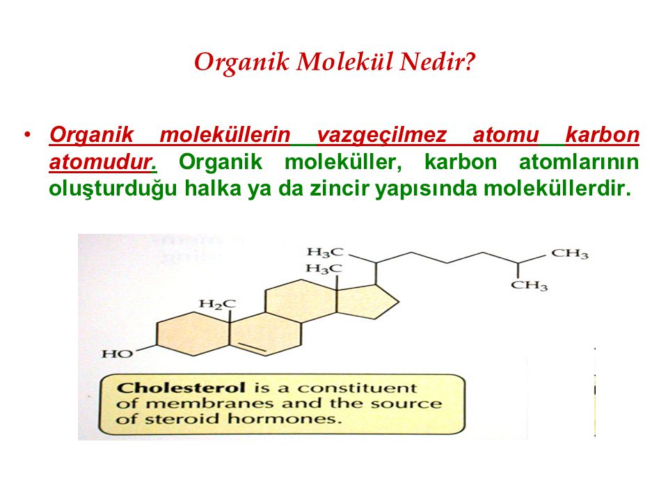 Organik Molekül Nedir? Organik moleküllerin vazgeçilmez atomu karbon atomudur. Organik moleküller, karbon atomlarının oluşturduğu halka ya da zincir y