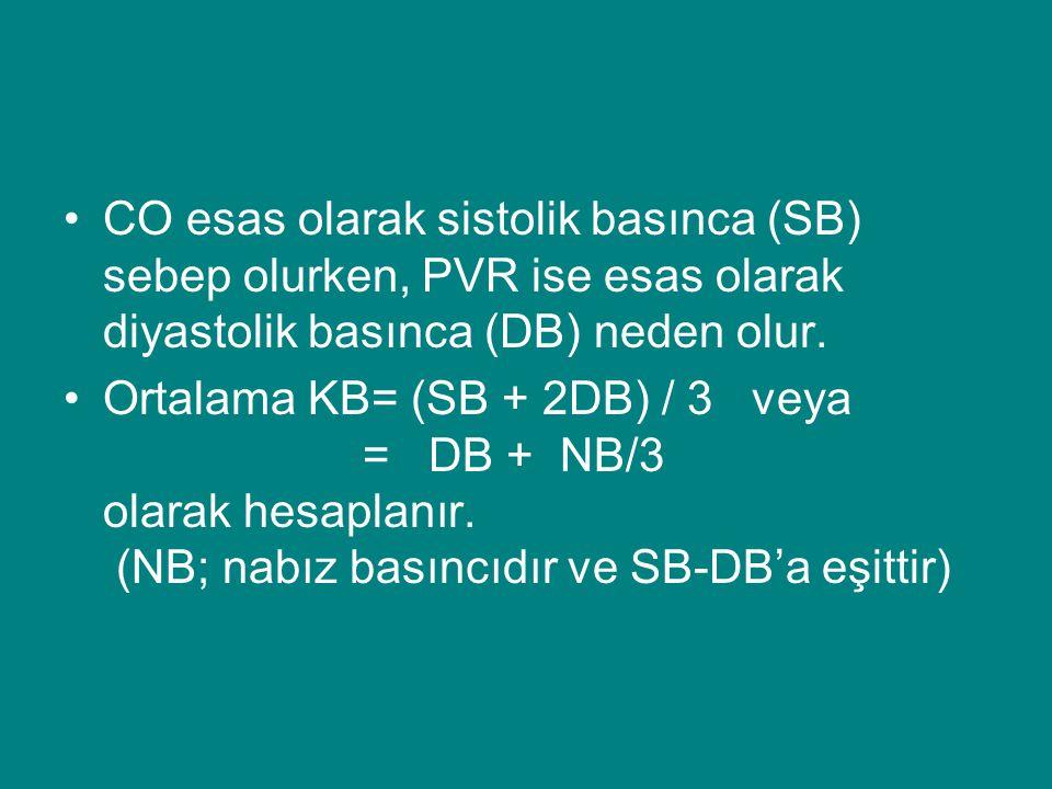 CO esas olarak sistolik basınca (SB) sebep olurken, PVR ise esas olarak diyastolik basınca (DB) neden olur.