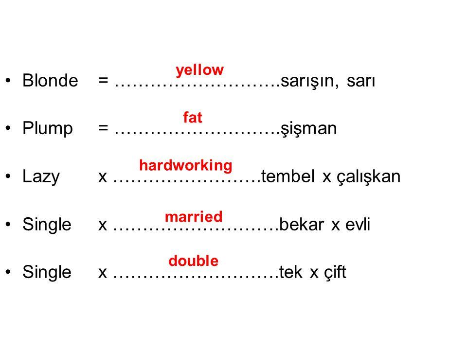 Blonde = ……………………….sarışın, sarı Plump = ……………………….şişman Lazy x …………………….tembel x çalışkan Singlex ……………………….bekar x evli Single x ……………………….tek x çift yellow fat hardworking married double