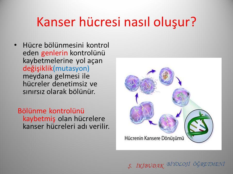 Kanser hücresi nasıl oluşur? Hücre bölünmesini kontrol eden genlerin kontrolünü kaybetmelerine yol açan değişiklik(mutasyon) meydana gelmesi ile hücre