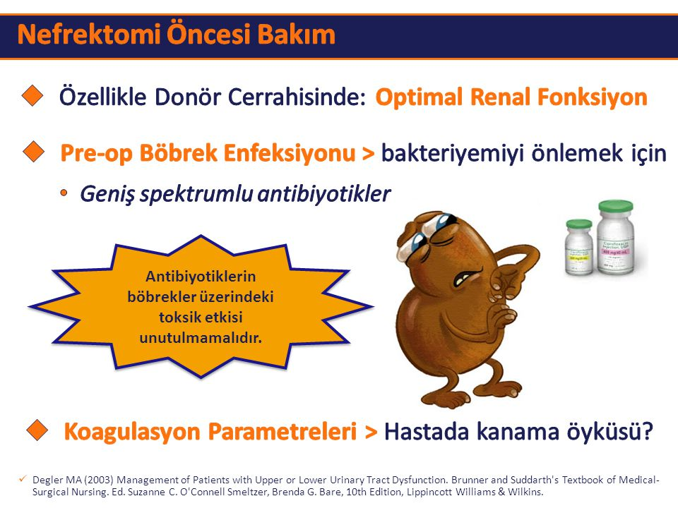 Antibiyotiklerin böbrekler üzerindeki toksik etkisi unutulmamalıdır.