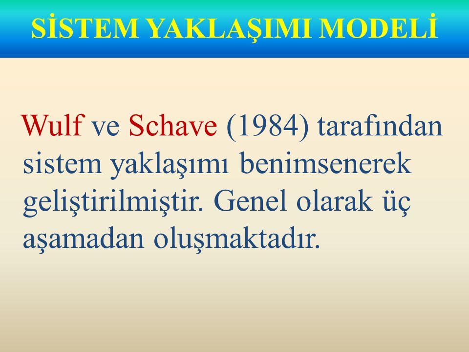 Arial Wulf ve Schave (1984) tarafından sistem yaklaşımı benimsenerek geliştirilmiştir.