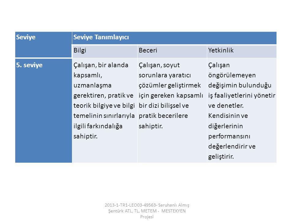 SeviyeSeviye Tanımlayıcı BilgiBeceriYetkinlik 5.