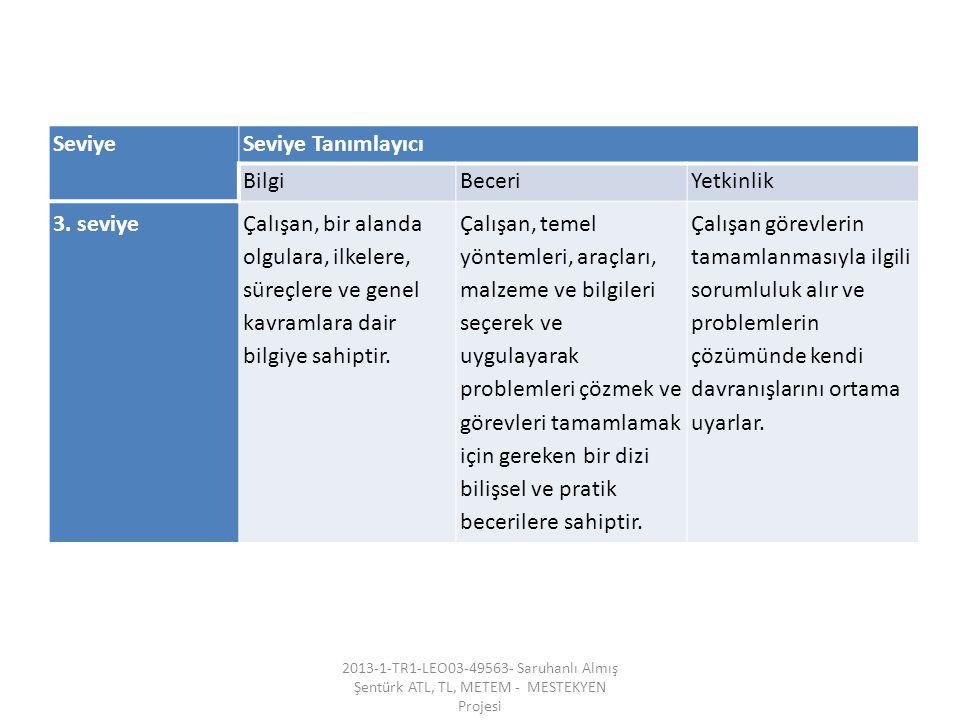 SeviyeSeviye Tanımlayıcı BilgiBeceriYetkinlik 3.