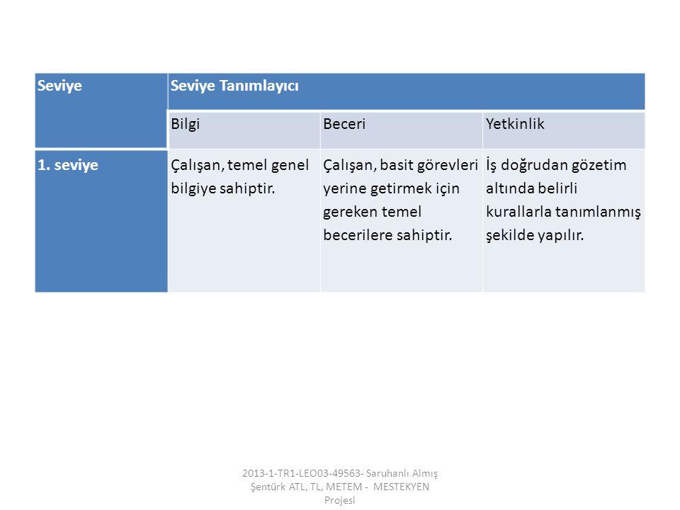 SeviyeSeviye Tanımlayıcı BilgiBeceriYetkinlik 1. seviyeÇalışan, temel genel bilgiye sahiptir.
