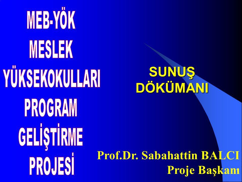 1 SUNUŞ DÖKÜMANI Prof.Dr. Sabahattin BALCI Proje Başkanı