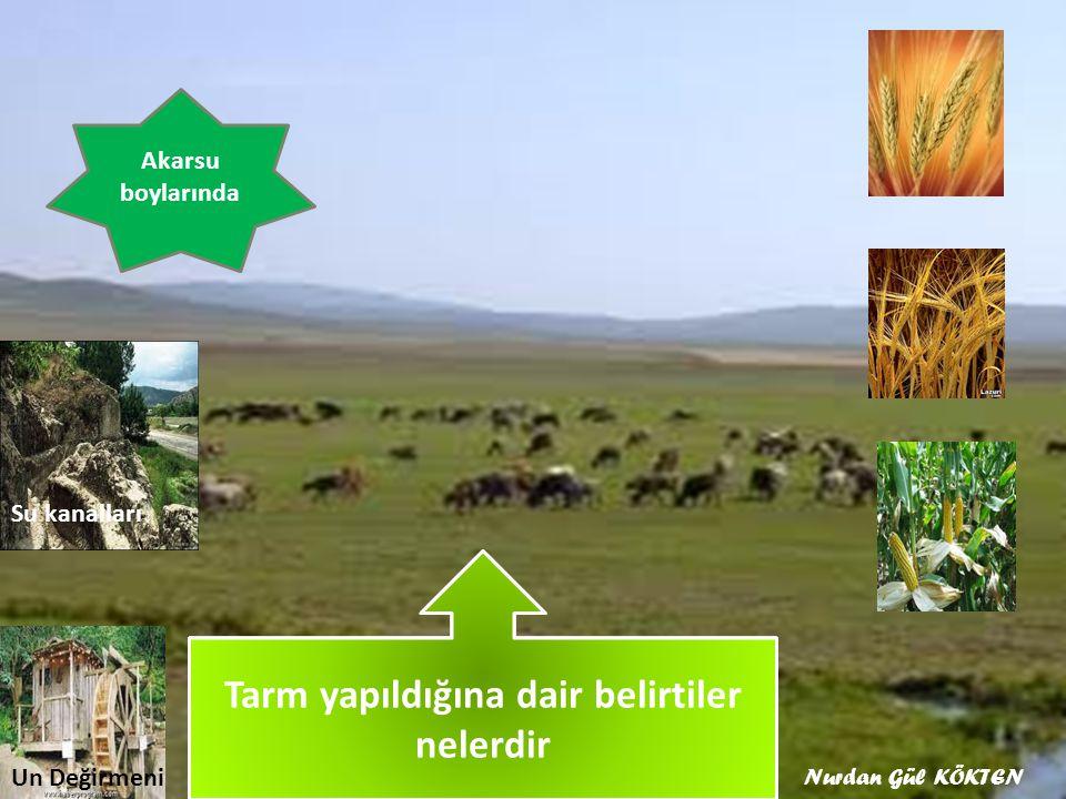 Orta Asya'da Tarım nerelerde yapılırdı Akarsu boylarında Hangi ürünler yetiştirilirdi Su kanalları Un Değirmeni Tarm yapıldığına dair belirtiler nelerdir Nurdan Gül KÖKTEN