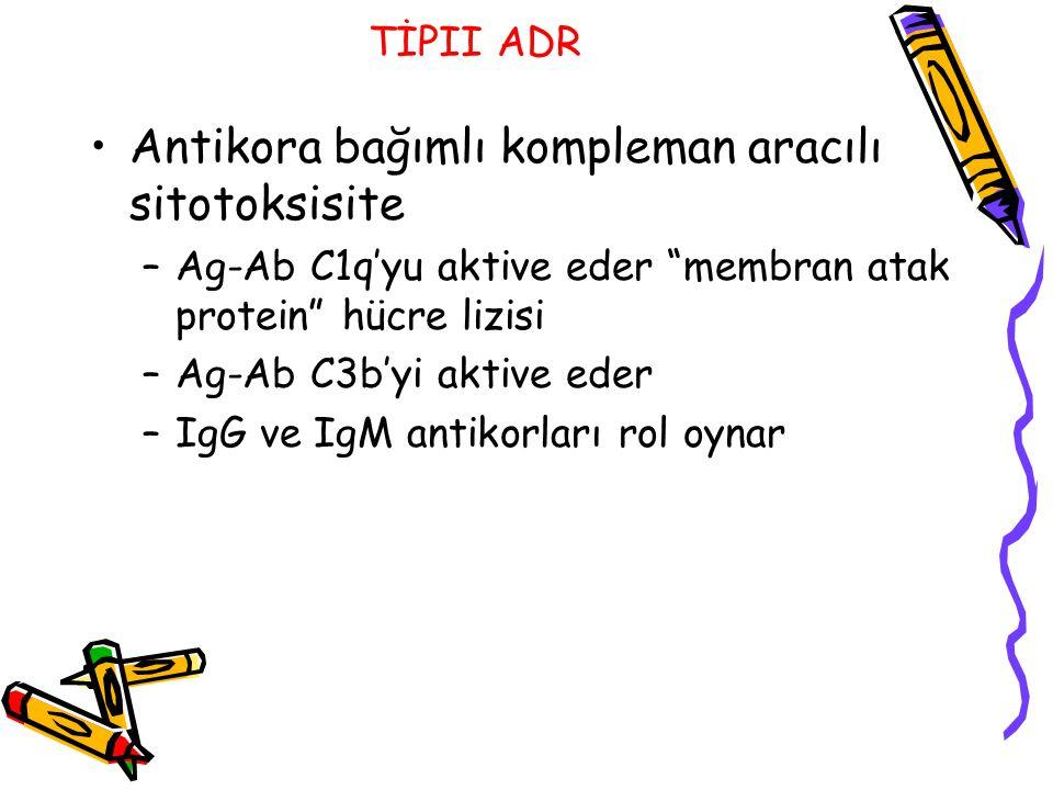"TİPII ADR Antikora bağımlı kompleman aracılı sitotoksisite –Ag-Ab C1q'yu aktive eder ""membran atak protein"" hücre lizisi –Ag-Ab C3b'yi aktive eder –Ig"
