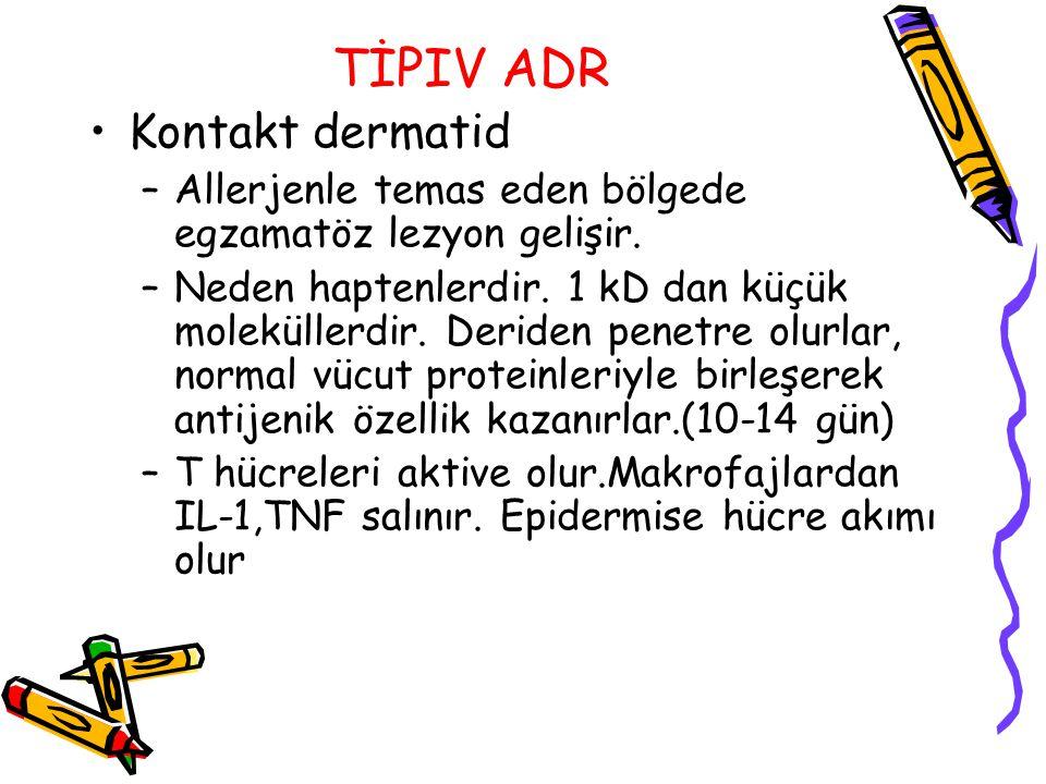 TİPIV ADR Kontakt dermatid –Allerjenle temas eden bölgede egzamatöz lezyon gelişir. –Neden haptenlerdir. 1 kD dan küçük moleküllerdir. Deriden penetre