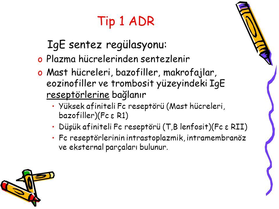Tip 1 ADR IgE sentez regülasyonu: oPlazma hücrelerinden sentezlenir oMast hücreleri, bazofiller, makrofajlar, eozinofiller ve trombosit yüzeyindeki Ig
