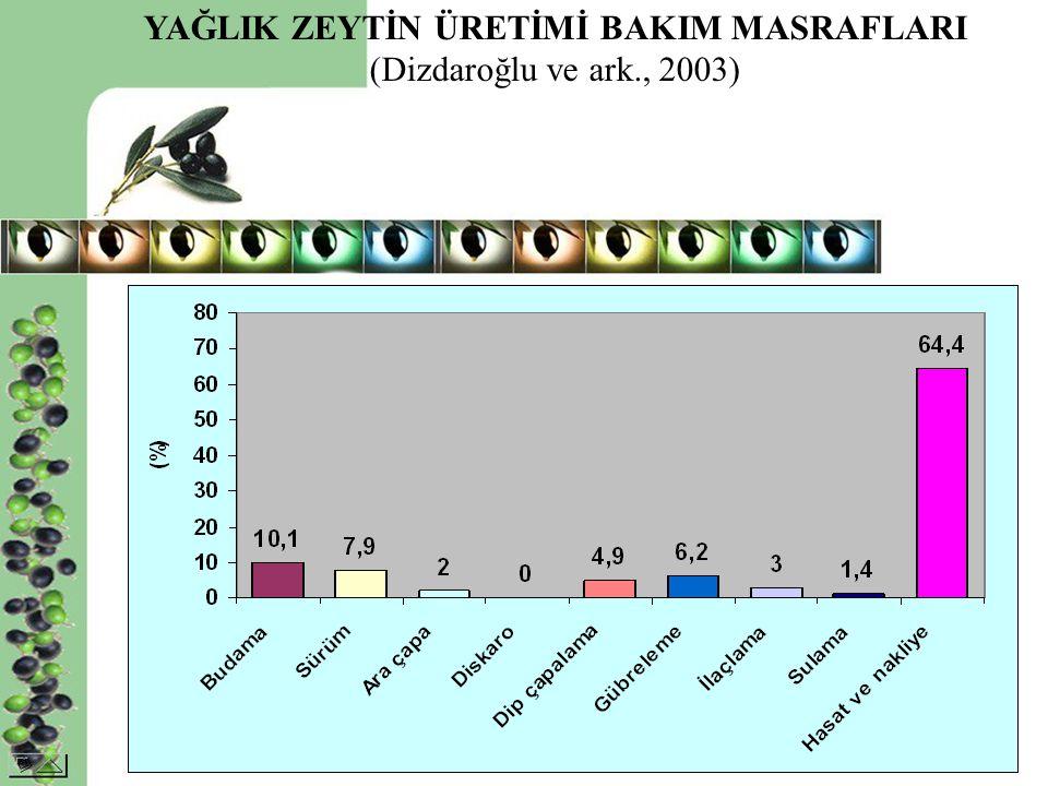 YAĞLIK ZEYTİN ÜRETİMİ BAKIM MASRAFLARI (Dizdaroğlu ve ark., 2003)