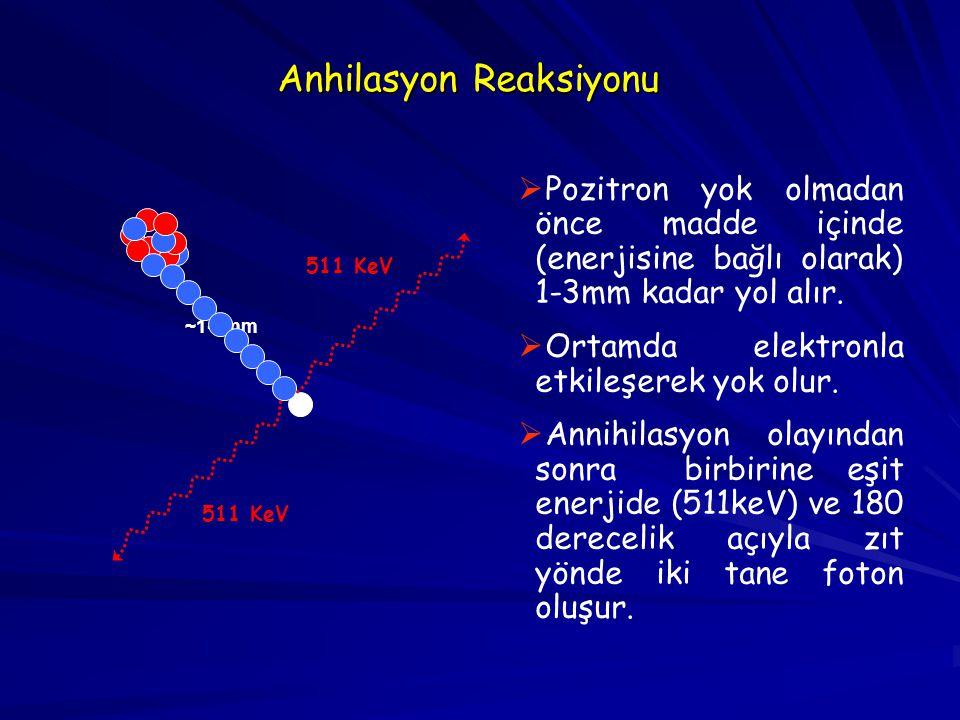 Anhilasyon Reaksiyonu ~1-3mm   Pozitron yok olmadan önce madde içinde (enerjisine bağlı olarak) 1-3mm kadar yol alır.   Ortamda elektronla etkileş