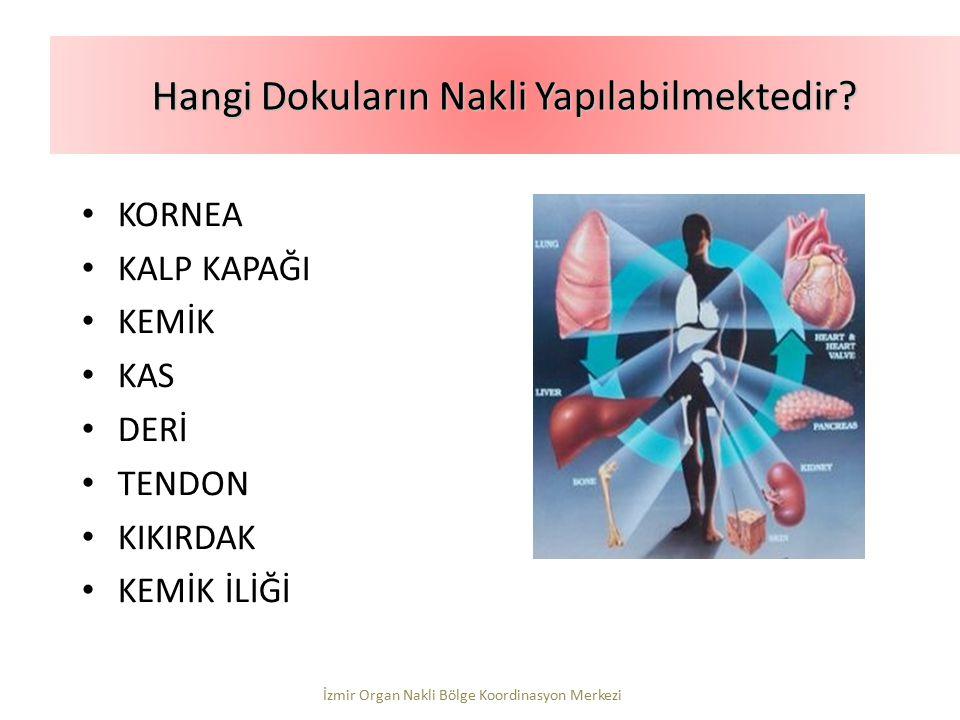 KORNEA KALP KAPAĞI KEMİK KAS DERİ TENDON KIKIRDAK KEMİK İLİĞİ Hangi Dokuların Nakli Yapılabilmektedir? İzmir Organ Nakli Bölge Koordinasyon Merkezi
