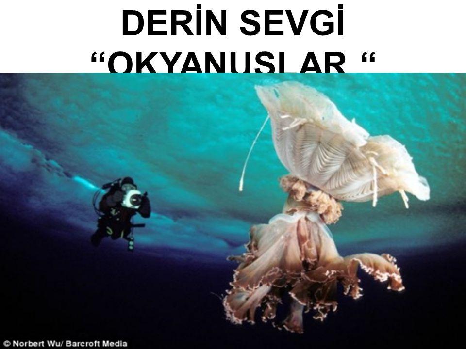 İNSAN SEVGİYLE ANLAM KAZANIYOR.