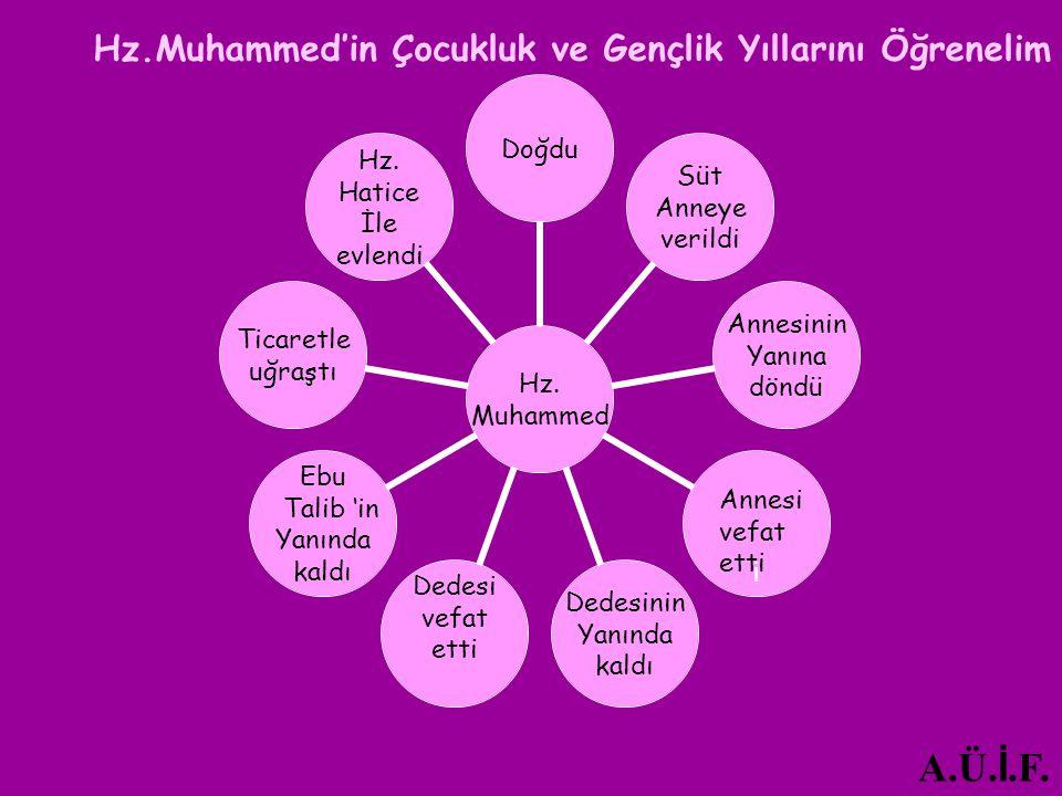 Hz. Muhammed Doğdu Süt Anneye verildi Annesinin Yanına döndü i Dedesinin Yanında kaldı Dedesi vefat etti Ebu Talib 'in Yanında kaldı Ticaretle uğraştı