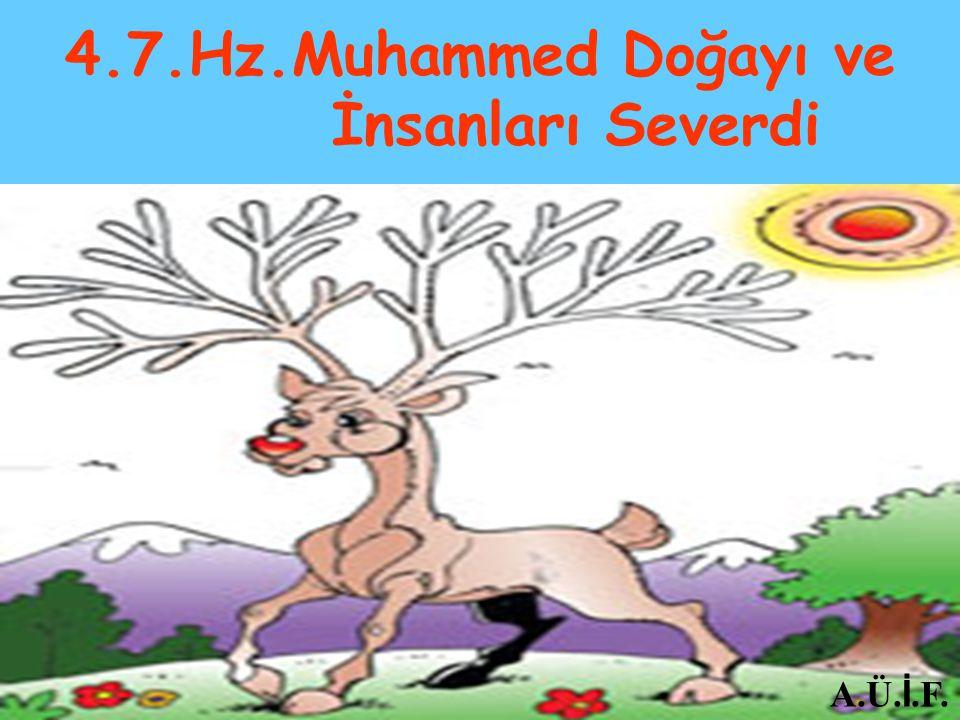 4.7.Hz.Muhammed Doğayı ve İnsanları Severdi A.Ü. İ.F.