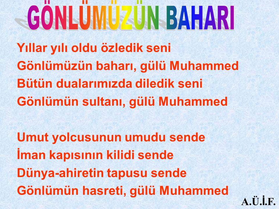 Yıllar yılı oldu özledik seni Gönlümüzün baharı, gülü Muhammed Bütün dualarımızda diledik seni Gönlümün sultanı, gülü Muhammed Umut yolcusunun umudu s