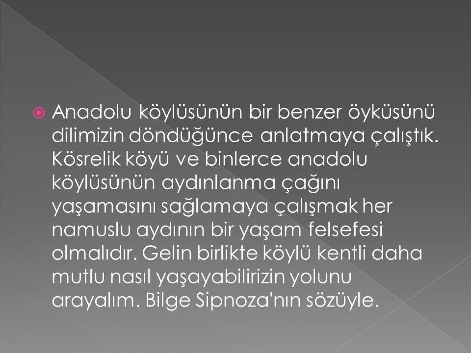  Anadolu köylüsünün bir benzer öyküsünü dilimizin döndüğünce anlatmaya çalıştık.