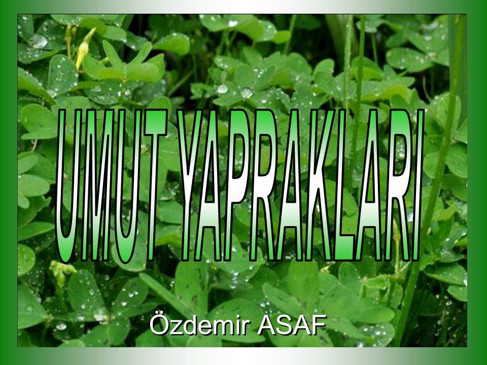 Özdemir ASAF Özdemir ASAF
