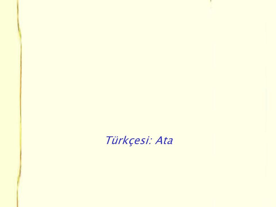 Türkçesi: Ata
